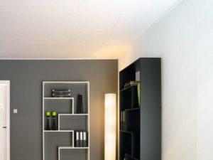Wand en plafondplaten